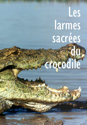 Poster of the movie 'Les larmes sacrées du crocodile'